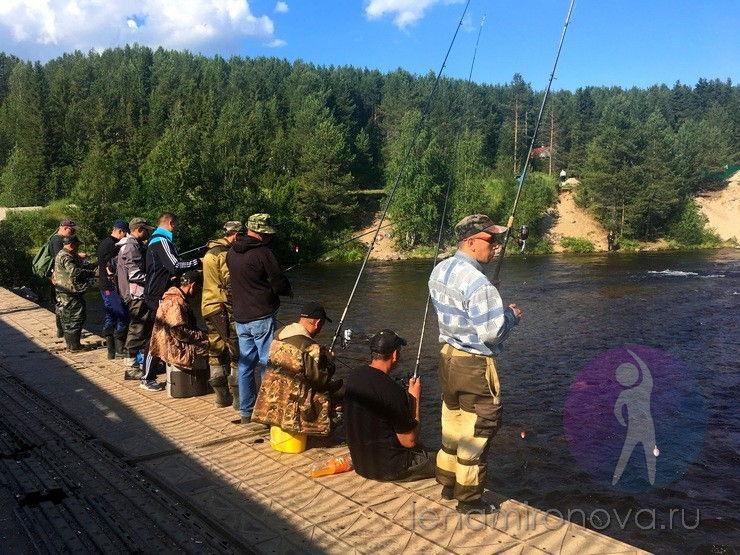 много рыбаков