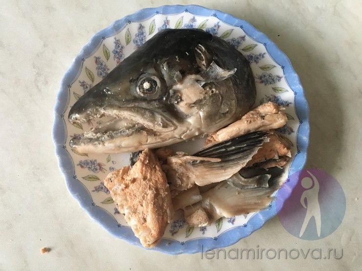 вареная голова и плавники рыбы